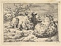 Two Recumbent Sheep MET DP828334.jpg