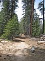 Typical terrain along high Sierra trails - panoramio.jpg