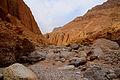 Tze'elim Canyon 16376 (11852737066).jpg
