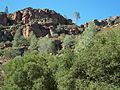 USA-Pinnacles National Monument-Bear Gulch Trail-9.jpg