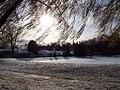 Under the tree. (66938800).jpg