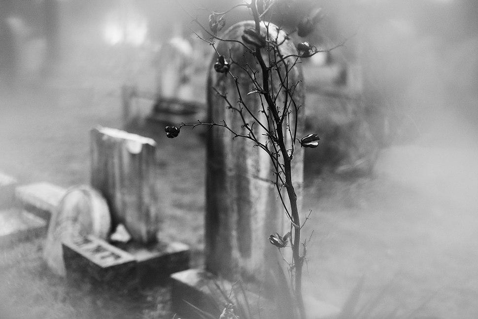 Union Graveyard III
