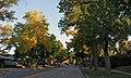 University Boulevard (3977820153).jpg