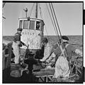 Vårfiske på Vardø - L0049 770Fo30141609280095.jpg