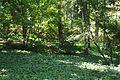 VIEW , ®'s - DigiGraf - Ð - ┼ , MADRID JARDÍN-PARQUE CAMPO del MORO - panoramio (18).jpg