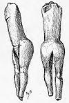 1907 drawing of the Venus impudique