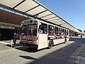 Verkehrshistorischer Tag - HHA 6416 at Barmbek 03.jpg