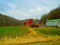 Vermont Township Farm - panoramio.jpg