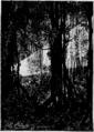 Verne - La Maison à vapeur, Hetzel, 1906, Ill. page 154.png