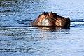 Victoria Falls 2012 05 23 1409 (7421832468).jpg