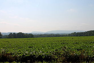 Madison Township, Columbia County, Pennsylvania - Field in Madison Township, Columbia County, Pennsylvania, looking east near the Montour County Line