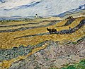 Vincent van Gogh - Enclosed Field with Ploughman - Google Art Project.jpg