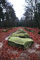 Visbeker Megalithen Grabstätte.jpg