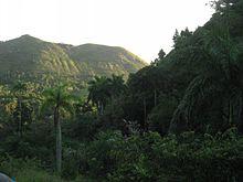 220px Vista del Escambray%2C Cuba