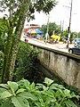 Vista del puente de los pintores.JPG