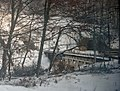Volovets'kyi district, Zakarpats'ka oblast, Ukraine - panoramio - Leonid Andronov (6).jpg