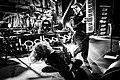 Voyager @ Euroblast Festival 61.jpg