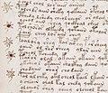 Voynich manuscript recipe example 107r crop.jpg
