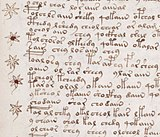 Voynich manuscript recipe example 107r crop.jpg