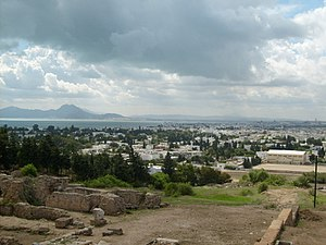 Carthage vue depuis la colline de Byrsa