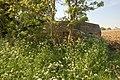 WW2 pillbox hiding in the hedgerow near Great Bedwyn - geograph.org.uk - 802682.jpg