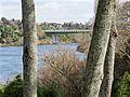 Wairere Drive bridge, Pukete.jpg
