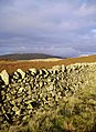 Wall, Brownthwaite - geograph.org.uk - 285192.jpg