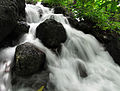 Water-Stream-in-Koovery-3.JPG