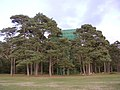 Water Tower at Roundhill Campsite, New Forest - geograph.org.uk - 69259.jpg