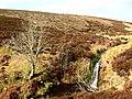 Waterfall, Byrecleugh Burn - geograph.org.uk - 375775.jpg