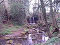Waterfall - geograph.org.uk - 86867.jpg