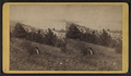 Watkins village and Seneca Lake, from Robert N. Dennis collection of stereoscopic views.png