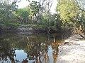 Wauchula FL Heard Bridge Rd Peace River north01.jpg