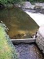 Weir on the Afon Aeron, Aberaeron - geograph.org.uk - 593714.jpg