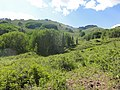 Weminuche Wilderness hills.JPG