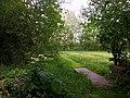Wet meadows at the Larenstein Estate.jpg