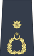 Wg Cdr Pakistan Air Force.png
