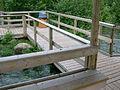 Whitefish Island boardwalk, 6 floodgates open 2.JPG