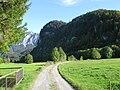 Wiesen bei Raut (Kochelsee Westufer, Ortsteil von Schlehdorf) mit Kochelsee und Jochberg im Hintergrund.jpg
