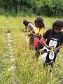 Wikilovesafrica1.jpg