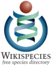 The current Wikispecies logo