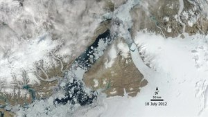 File:Wild Arctic Summer.ogv