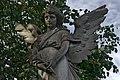 Wings (46187080515).jpg