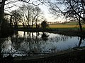 Winterborne Came, pond on the South Winterborne - geograph.org.uk - 1093967.jpg