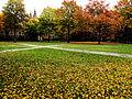 Yale Campus Green (4138541531).jpg