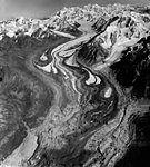Yanert Glacier, terminus of valley glacier in the foreground covered in rock, August 27, 1964 (GLACIERS 5112).jpg