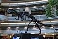 Yangchuanosaurus Atlanta.jpg