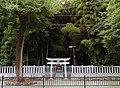 Yawatano-yabusirazu.jpg