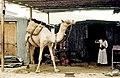 Yemen, gente 1987 14.jpg