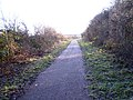 York Road Branch Line - geograph.org.uk - 1092254.jpg